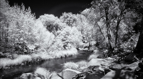 Shooting Infrared - X-Pro1
